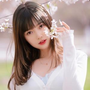 樱花树下的美女头像