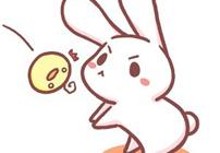萌萌的小兔子可爱图片